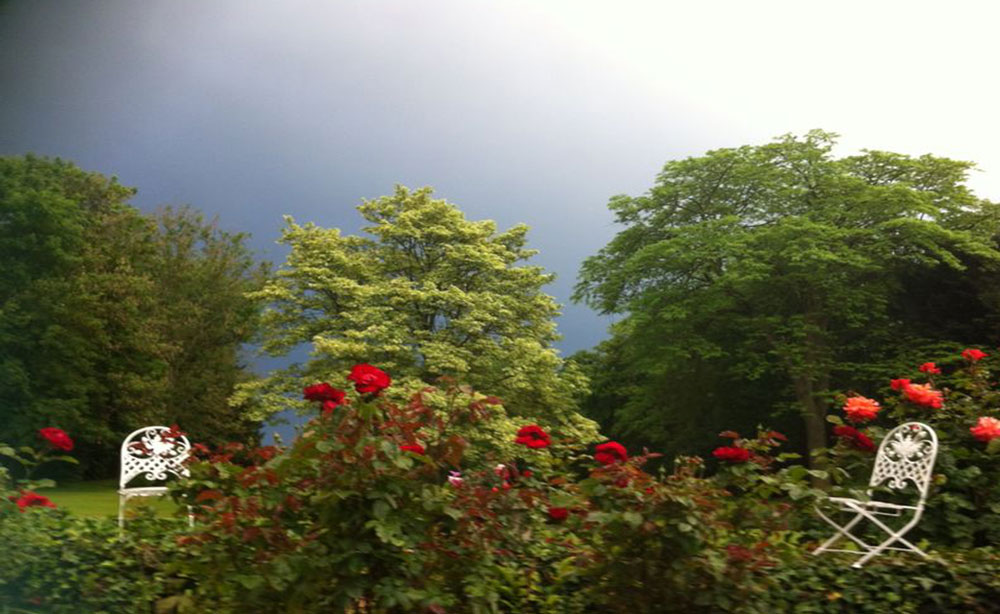 La Roseraie 80 vur sur le parc les roses et le jardin en fleurs